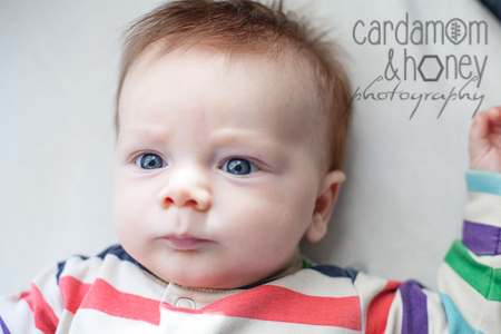 LC ForstenFotograf baby photographer-0268.jpg