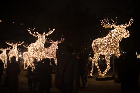 skansen julmarknad (22 of 40).jpg