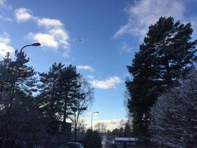 Beautiful blue sky!