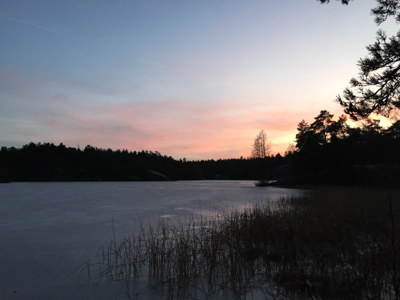 PhotoCredit: Cora Forsten