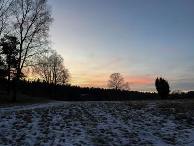 solstice-1566.jpg