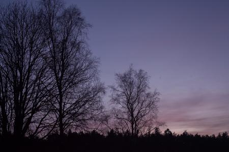solstice-9687.jpg
