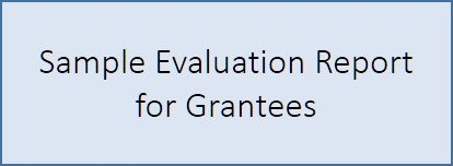 An example of a completed report to be used as a reference by grantees.