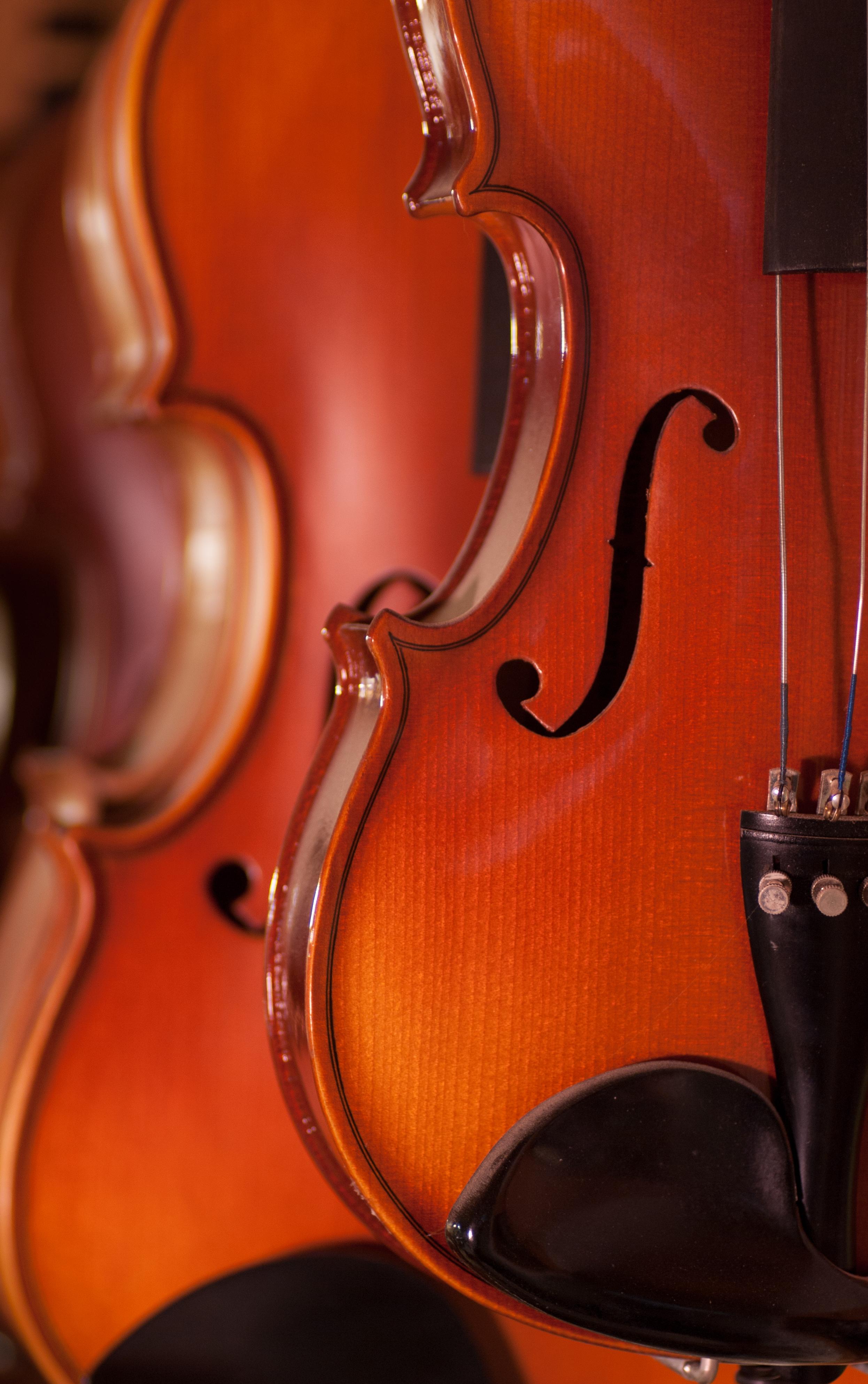 Perley Cello-24.jpg