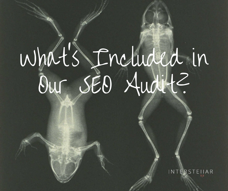 What's Included in Our SEO Audit-.png