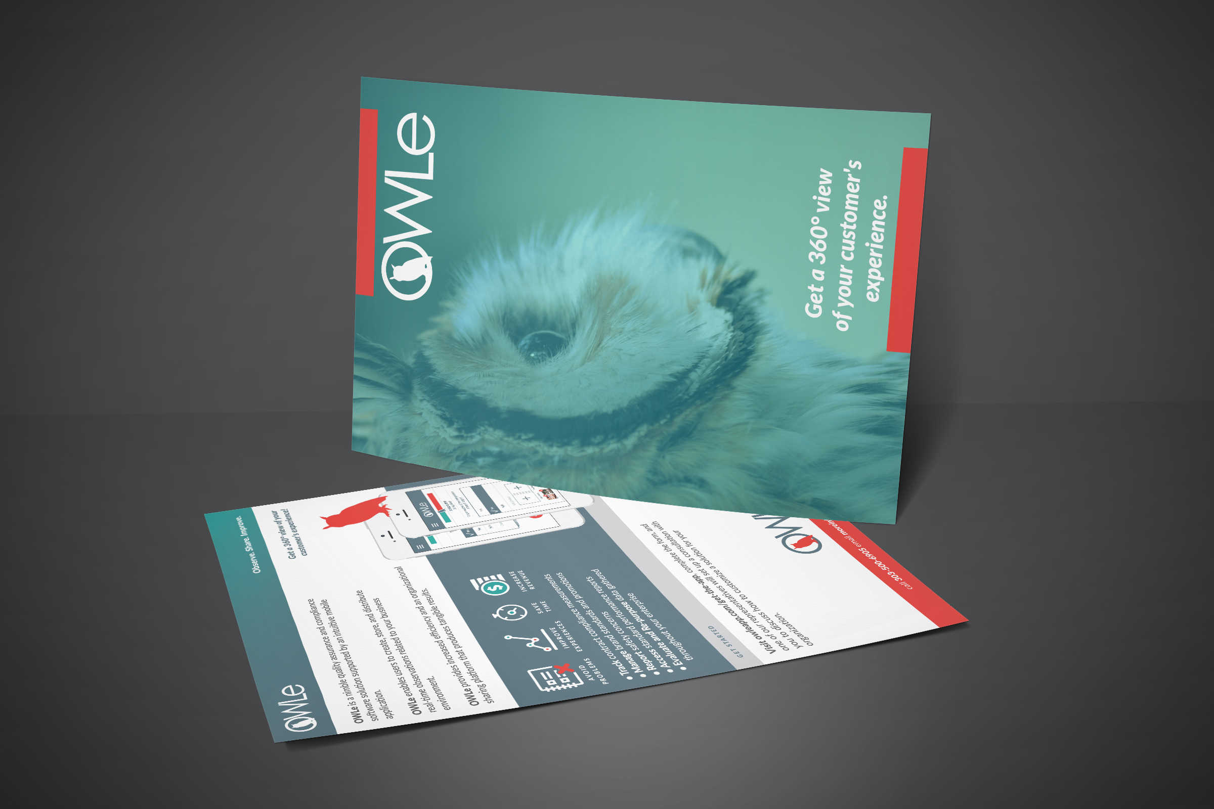 hearthfire-creative-marketing-collateral-brand-identity-designer-denver-colorado-owle-8.jpg