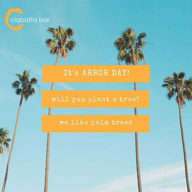 "It's #arborday: ""Arbor Day is a holiday in which individuals and groups are encouraged to plant trees..."" - Wikipedia  Plant a tree - tag us - share! . . . . . #plantatree #arborday #savetrees #palmtrees"