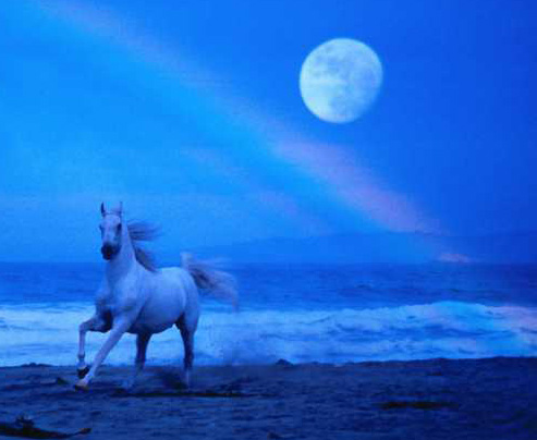 Promise of Blue Horses