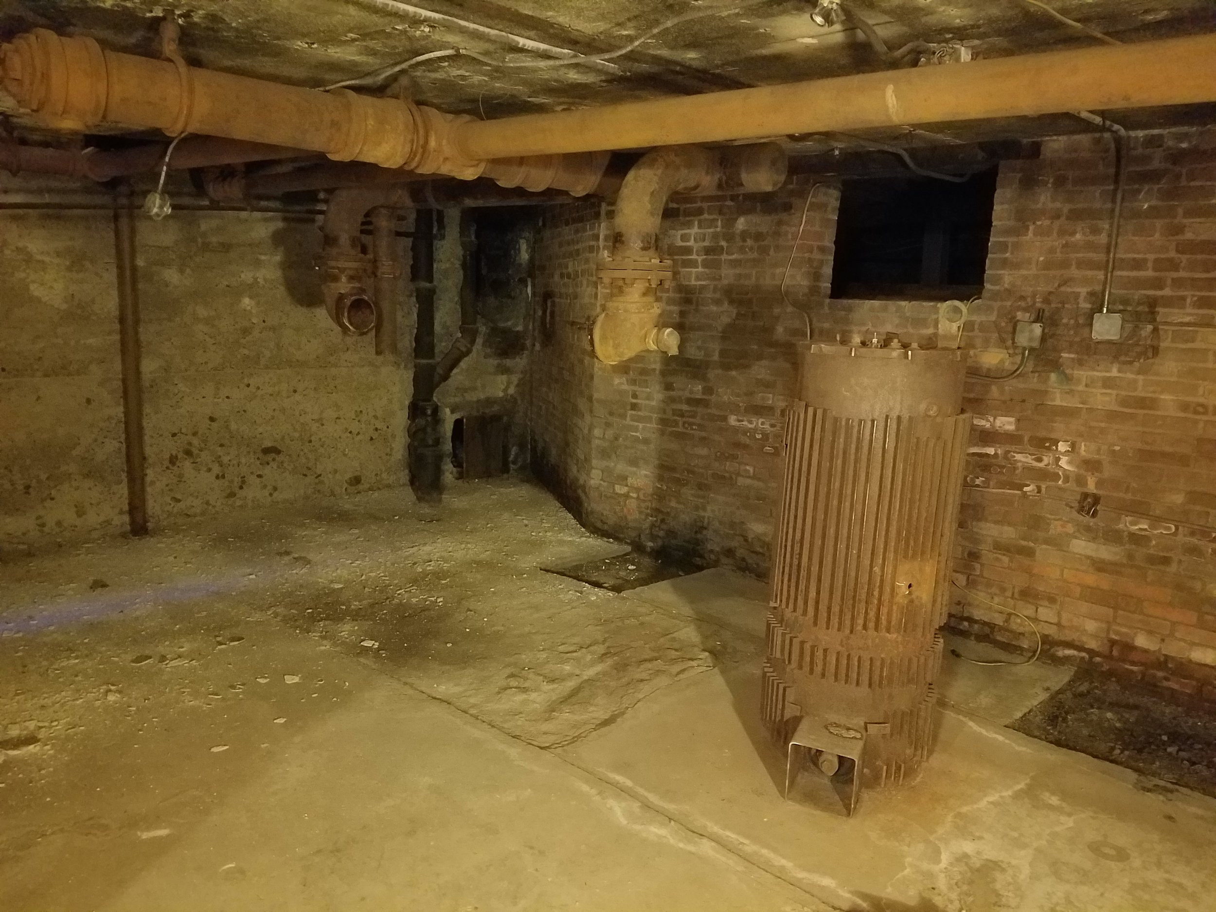 A picture of the very scary looking basement.