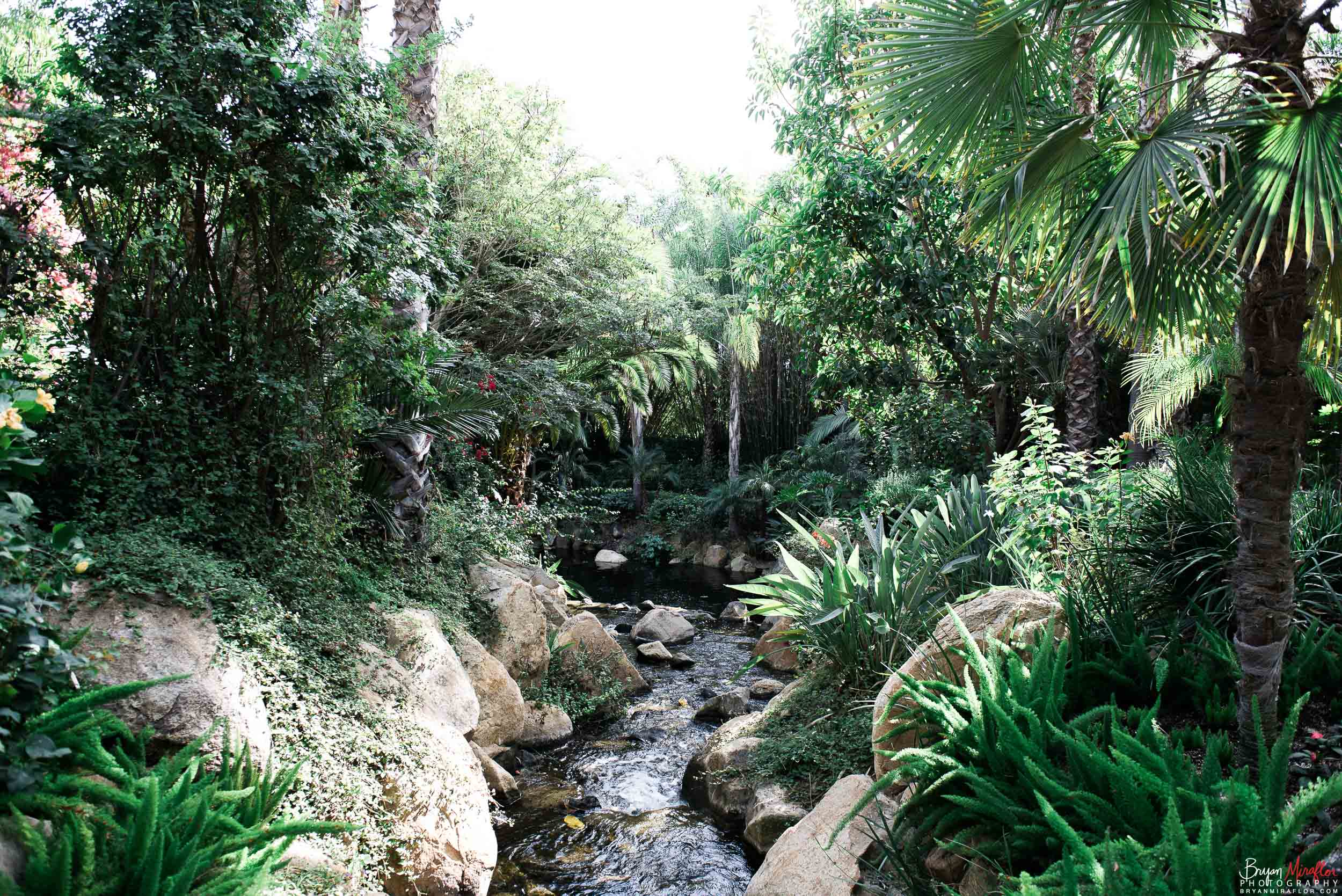Bryan-Miraflor-Photography-Hannah-Jonathan-Married-Grand-Traditions-Estate-Gardens-Fallbrook-20171222-077.jpg