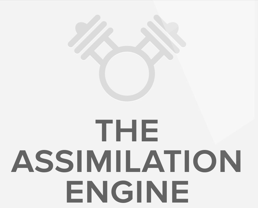 CLICK HERE TO VIEW OUR ASSIMILATION PROCESS