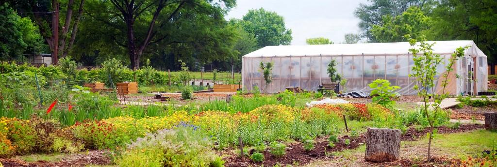Truly Living Well - Urban Farm - Atlanta, GA
