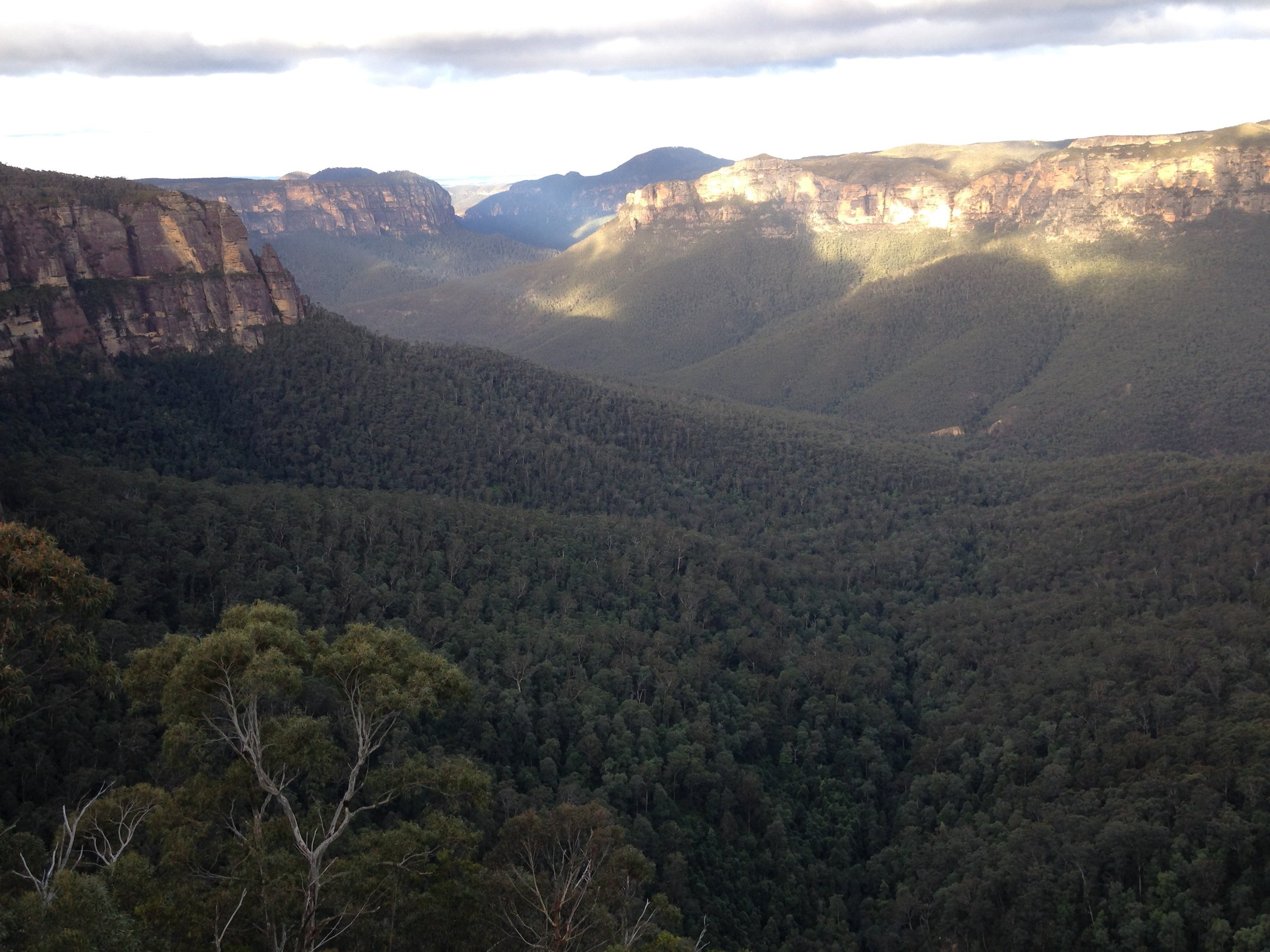 The view from Govett's Leap, Blackheath, not far from Pinerolo.  The Blue Mountains - an inspiration in themselves!