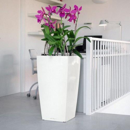 lechuza-cubico-40-planter_im_500_grande.jpg