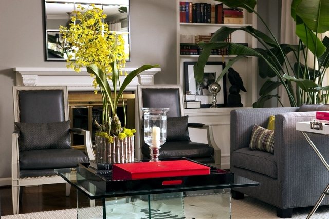 benefits-of-indoor-plants-why-are-they-so-important-to-our-house-0-986.jpg