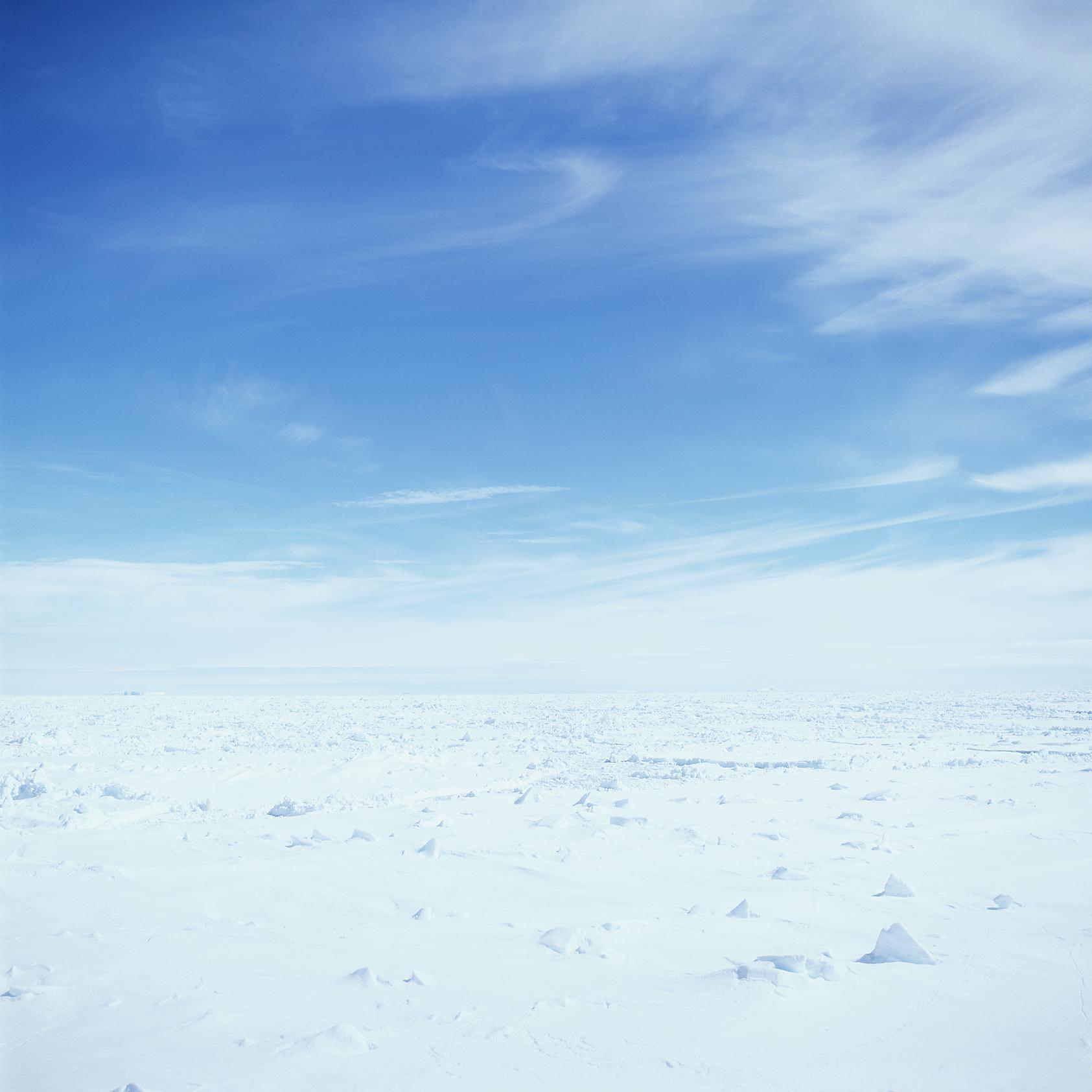 icevelvia.jpg