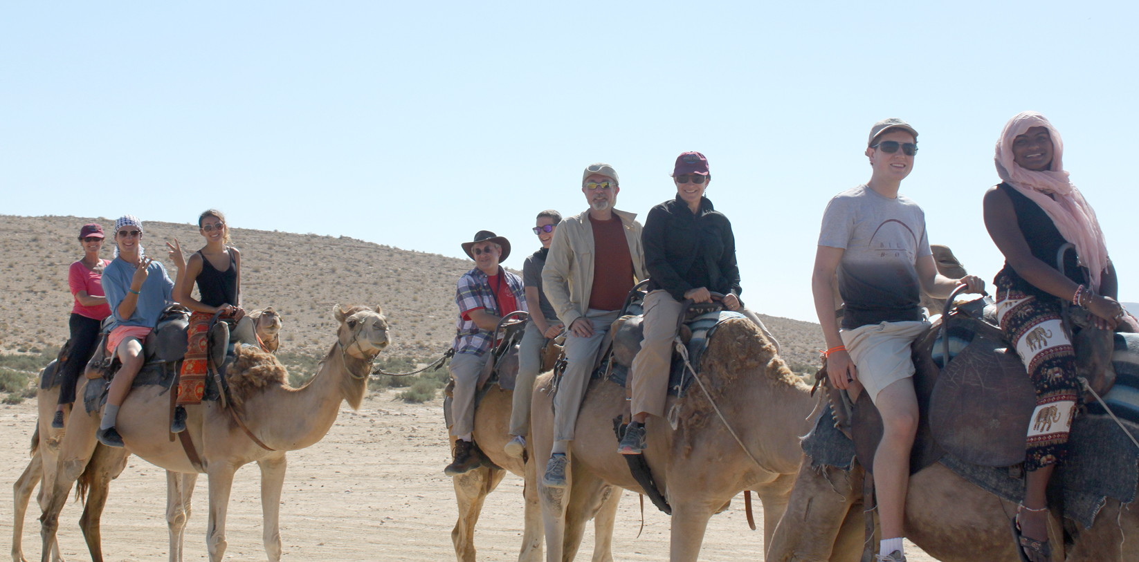 camel-group.jpg