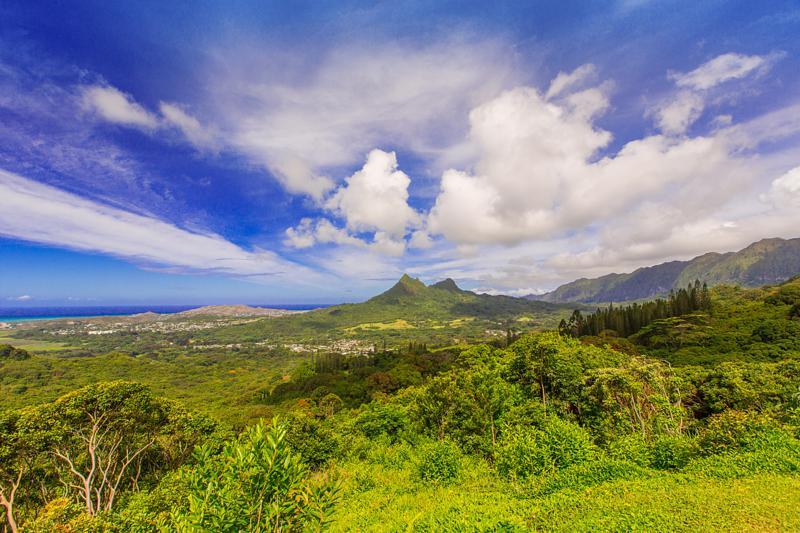 Photo-123 Kailuana-Kailua-802.jpg