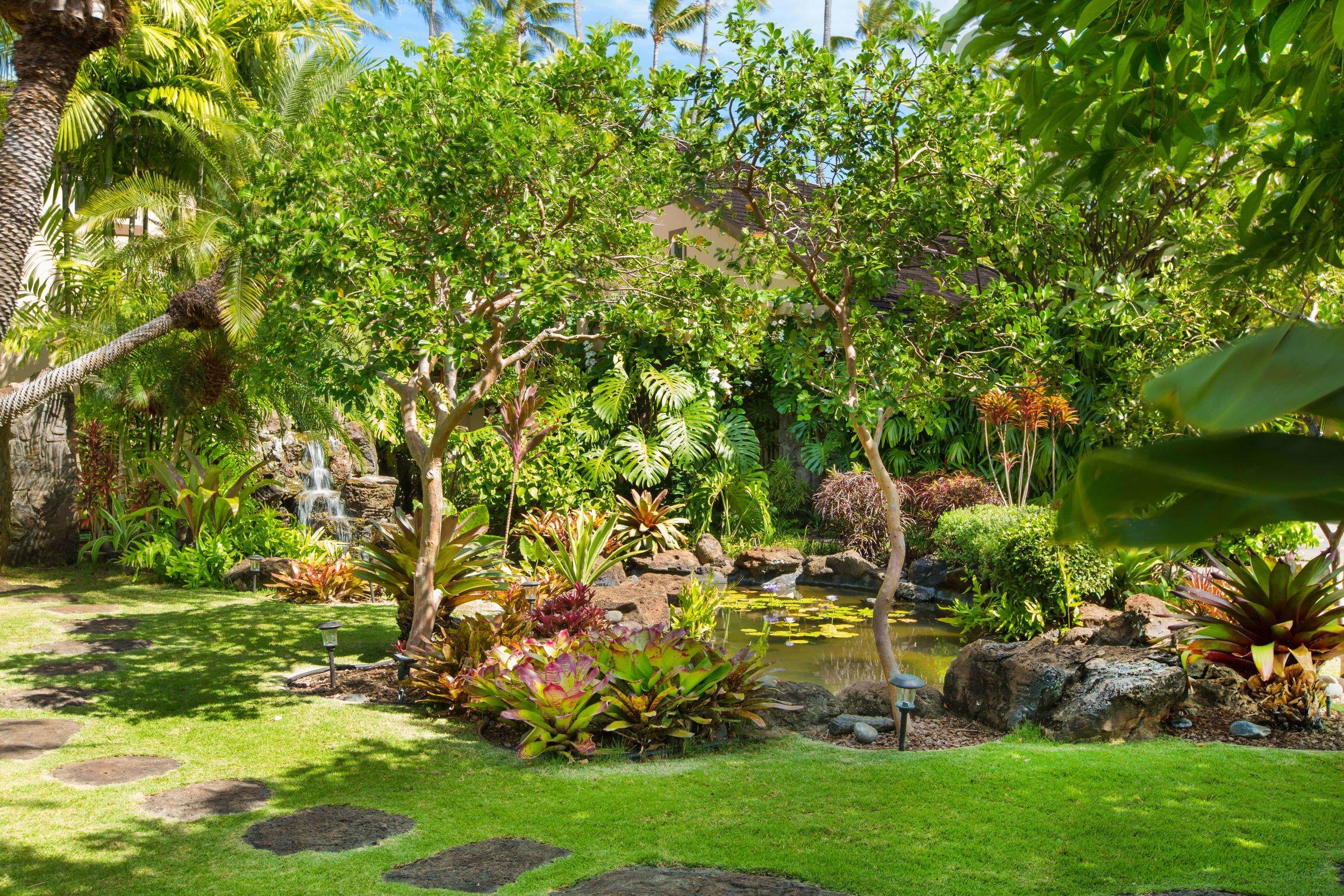 Photo-4731 Kahala-Garden & Lily Pond-366-min.jpg