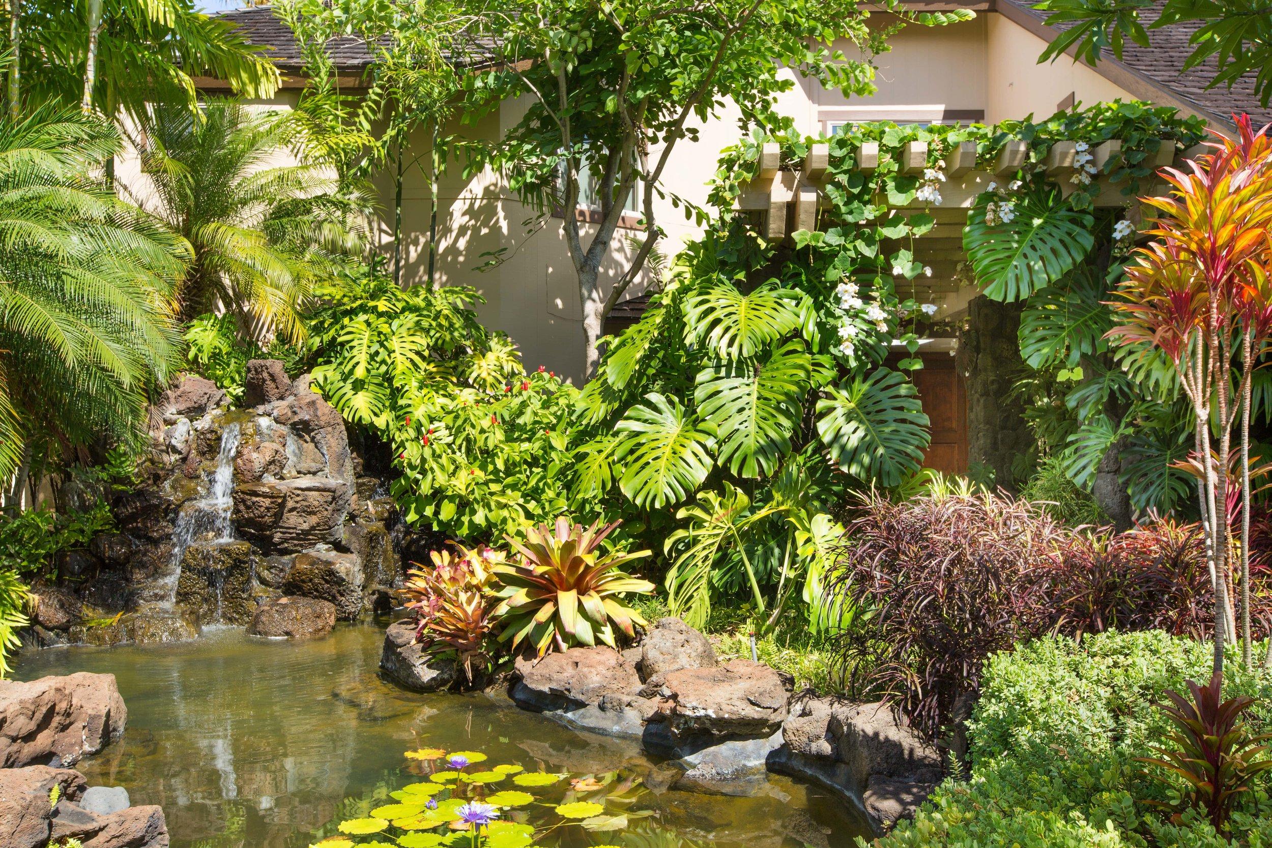 Photo-4731 Kahala-Garden & Lily Pond-377-min.jpg