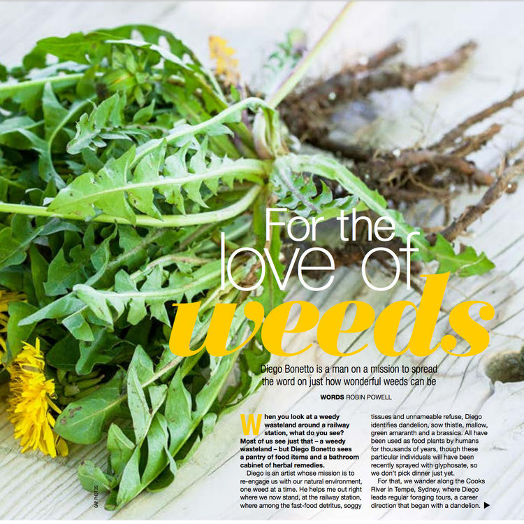 - For the Love of Weeds, Robin Powell, Your Garden Magazine, pgg 98-101, Winter 2016