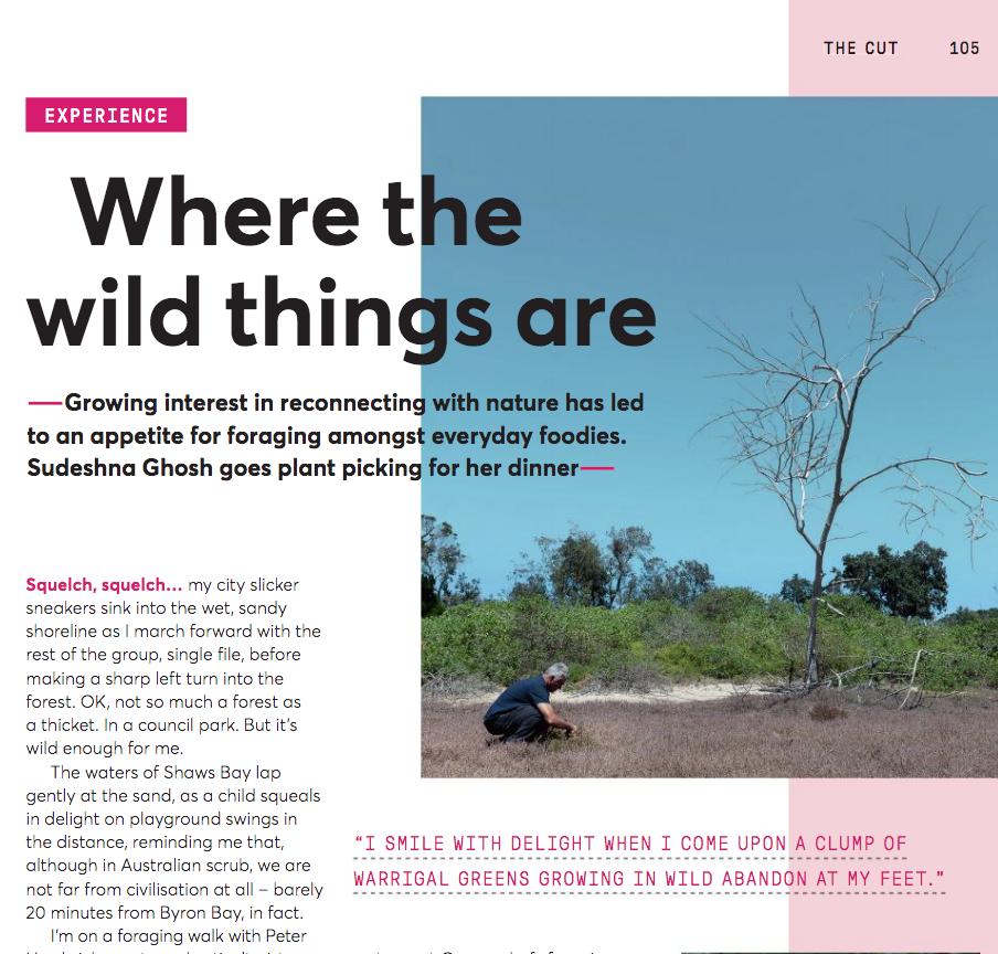- Where the Wild Things Are,Sudeshna Ghosh, Jetstar Magazine, November 2019
