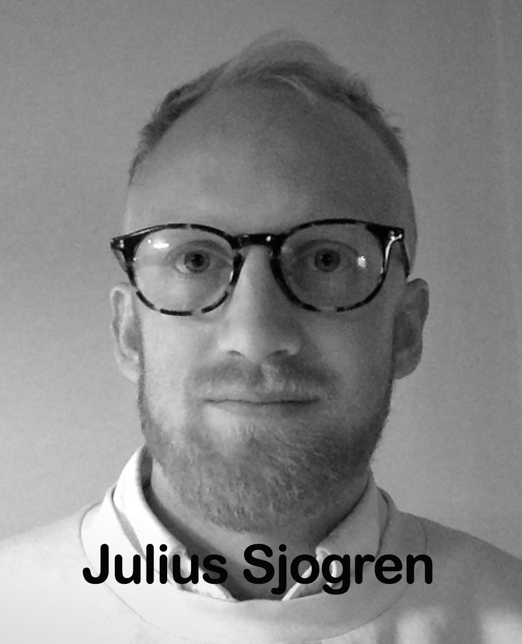 Julius Sjögren name.jpg
