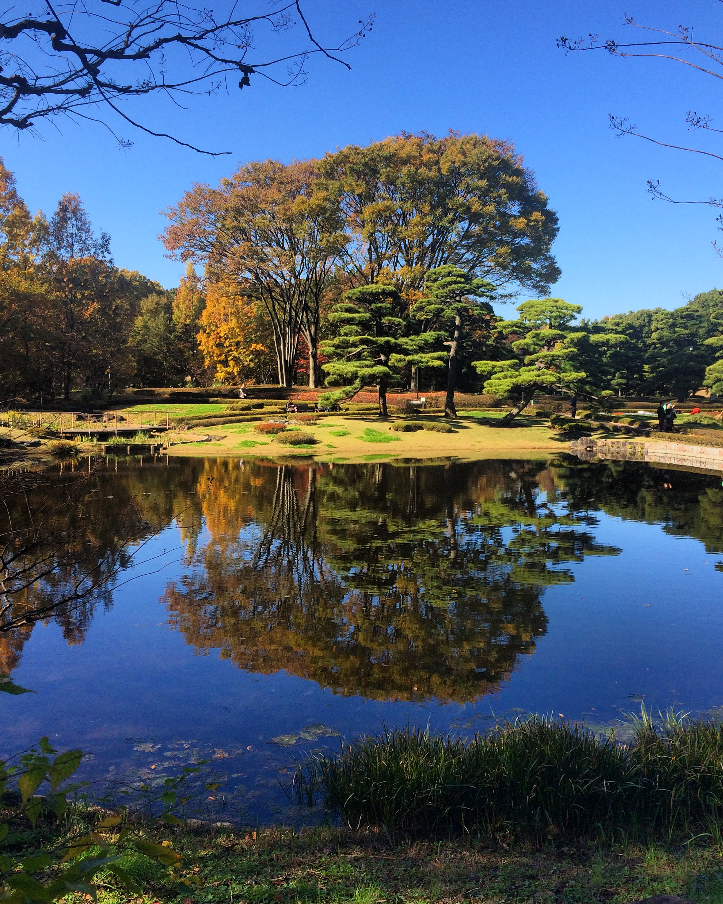 East Gardens of the Imperial Palace. Tokyo, Japan