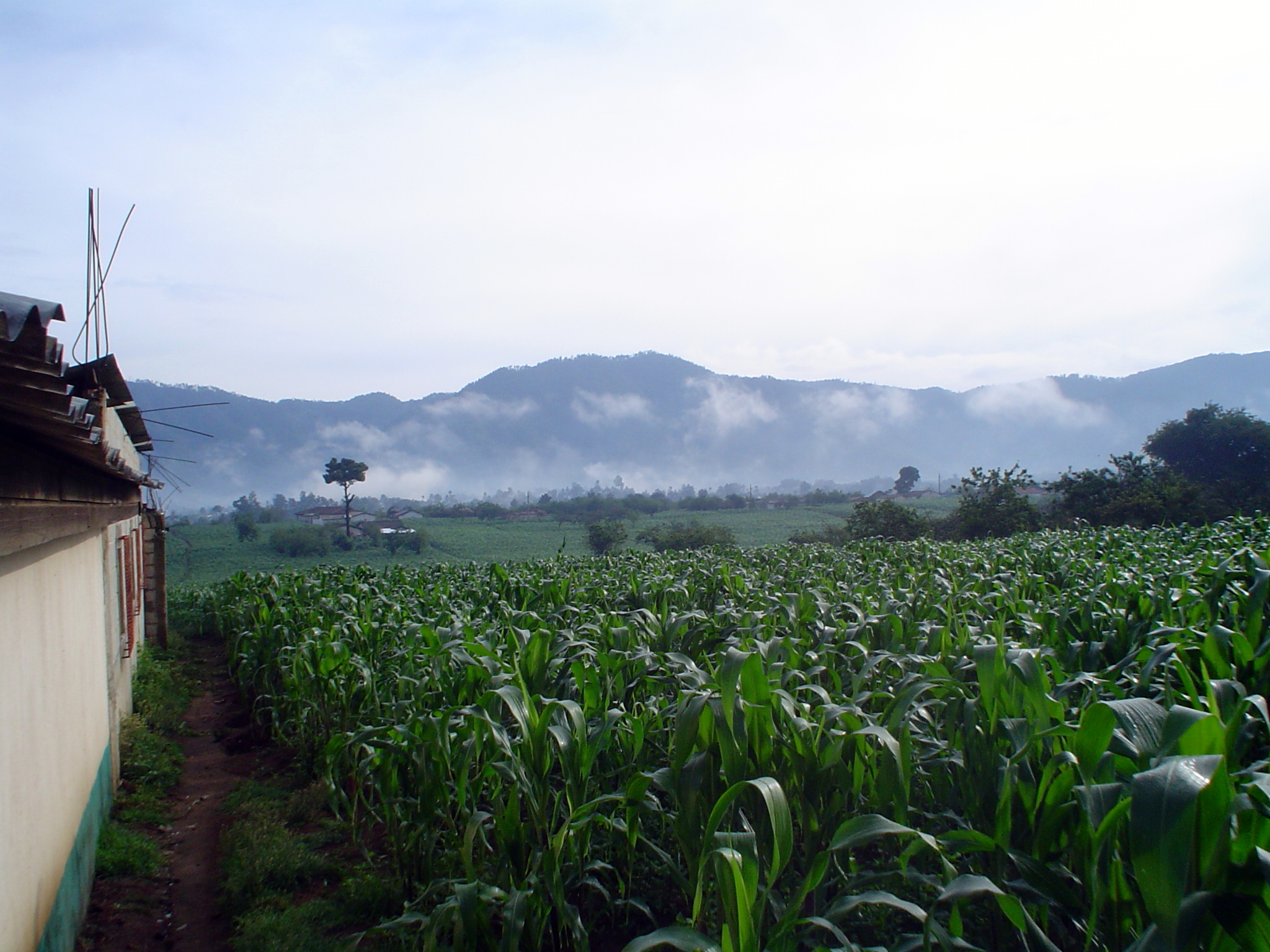 El campo  or the countryside outside of village where many focus group interviews took place.
