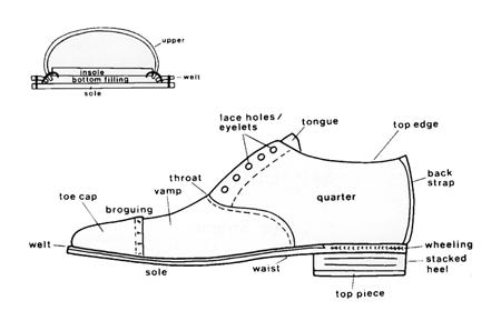 knowledge_shoe_diagram.jpg
