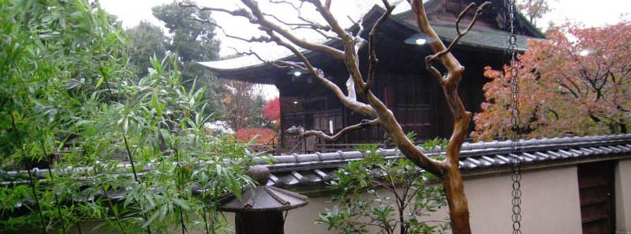 Enyuji 圓融寺 looking from the tea room to the alter shrine where zazen is done