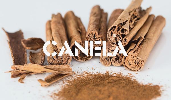 CANELA.jpg