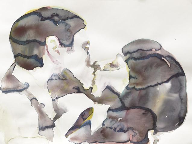 Die Pheromone entscheiden    Aquarell auf Papier   46 x 61 cm