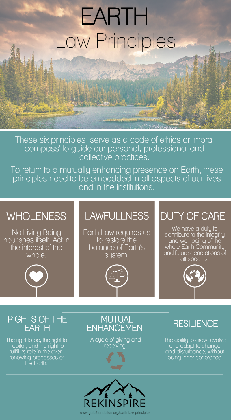 earth-law-principles-infographic-rekinspire-environment.png