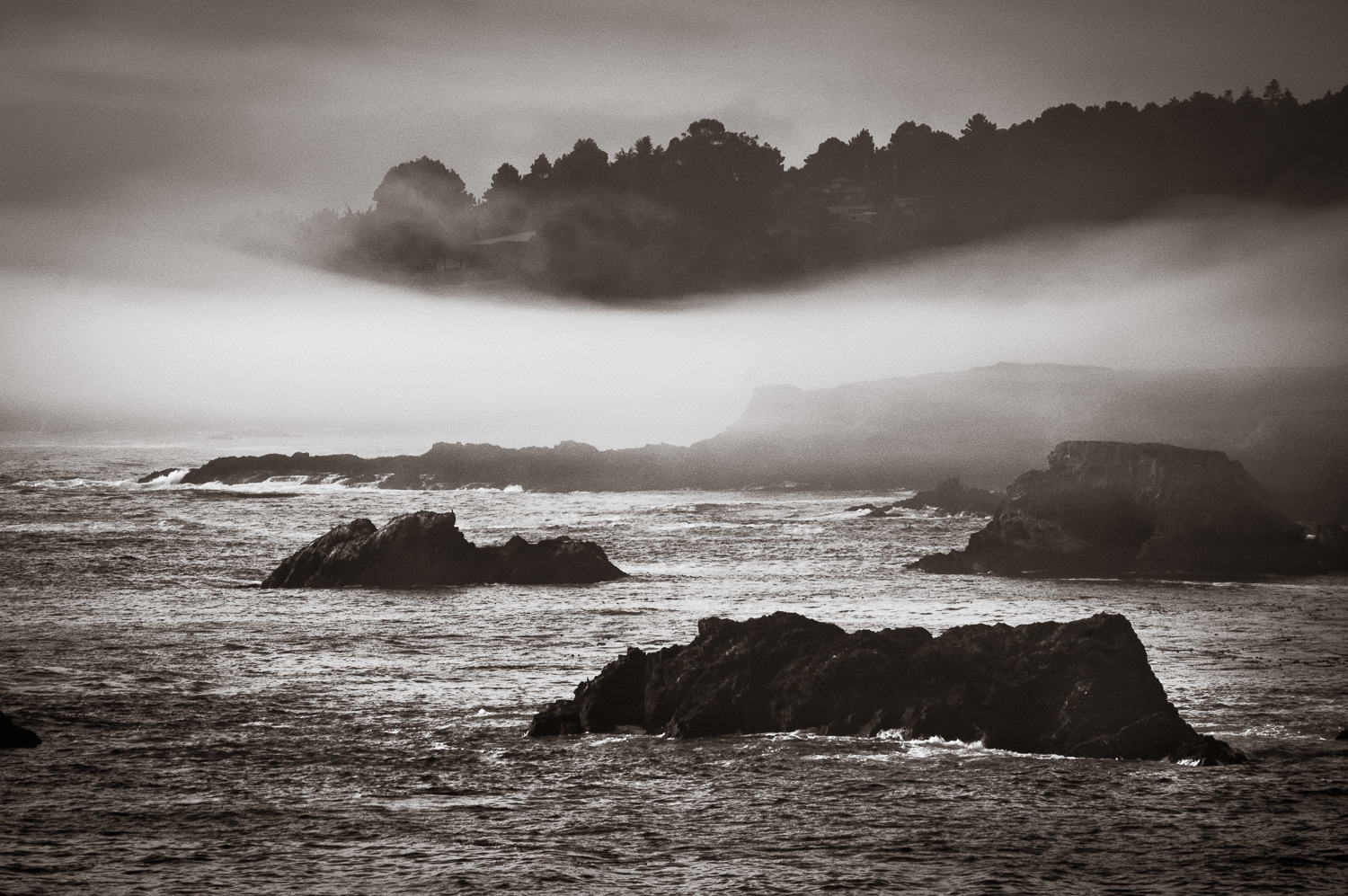 """Coastal Fog"",  Northern California, 2004"