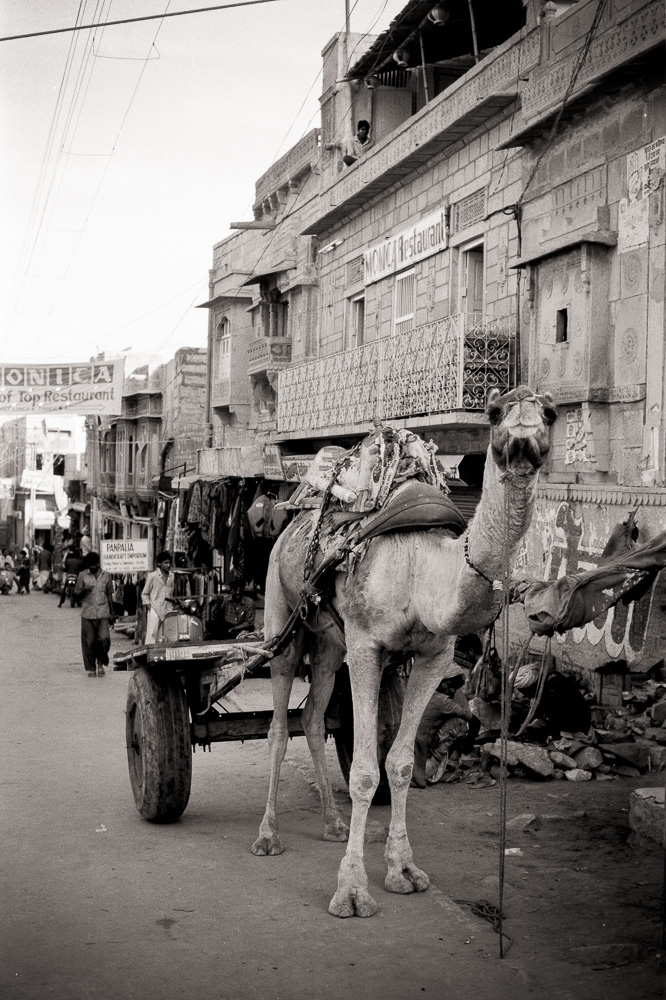 """Camel Cart"" Rajasthan, India, 1991"