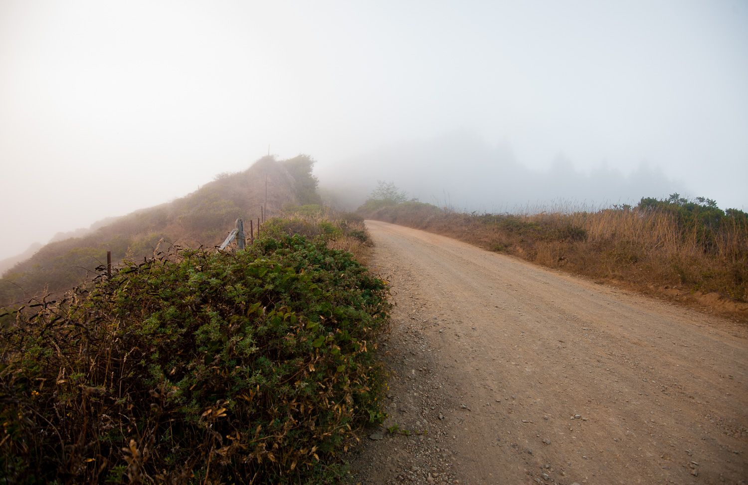"""The Road to Usal"", Lost Coast, CA, 2014"