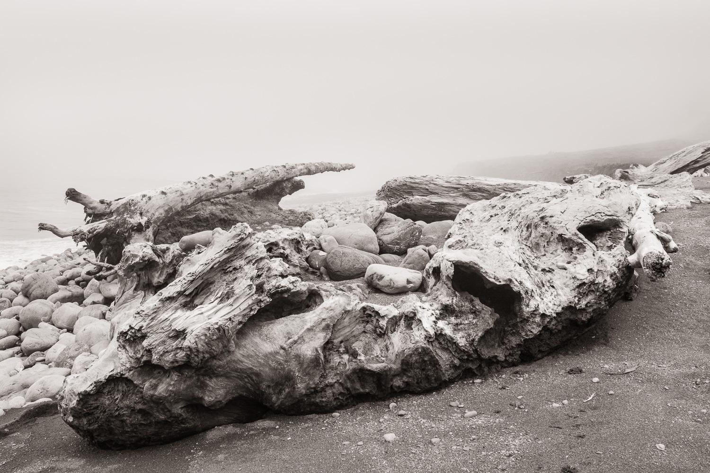 """Driftwood"", The Lost Coast, CA, 2014"