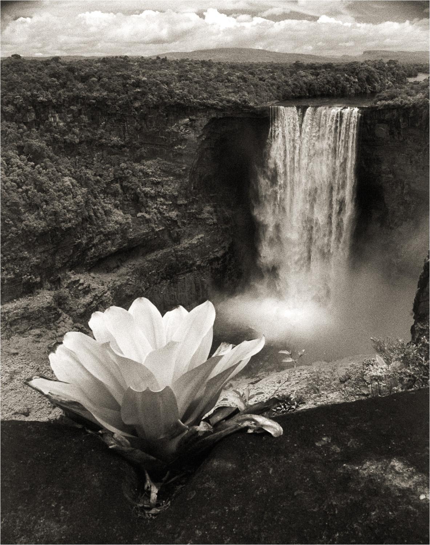 2000_Keiteur-Falls-Guyana.jpg