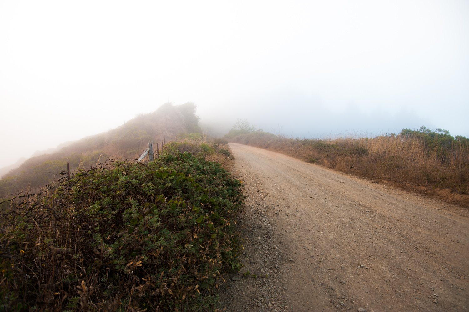 20140727_Road-Lost-Coast_1.jpg