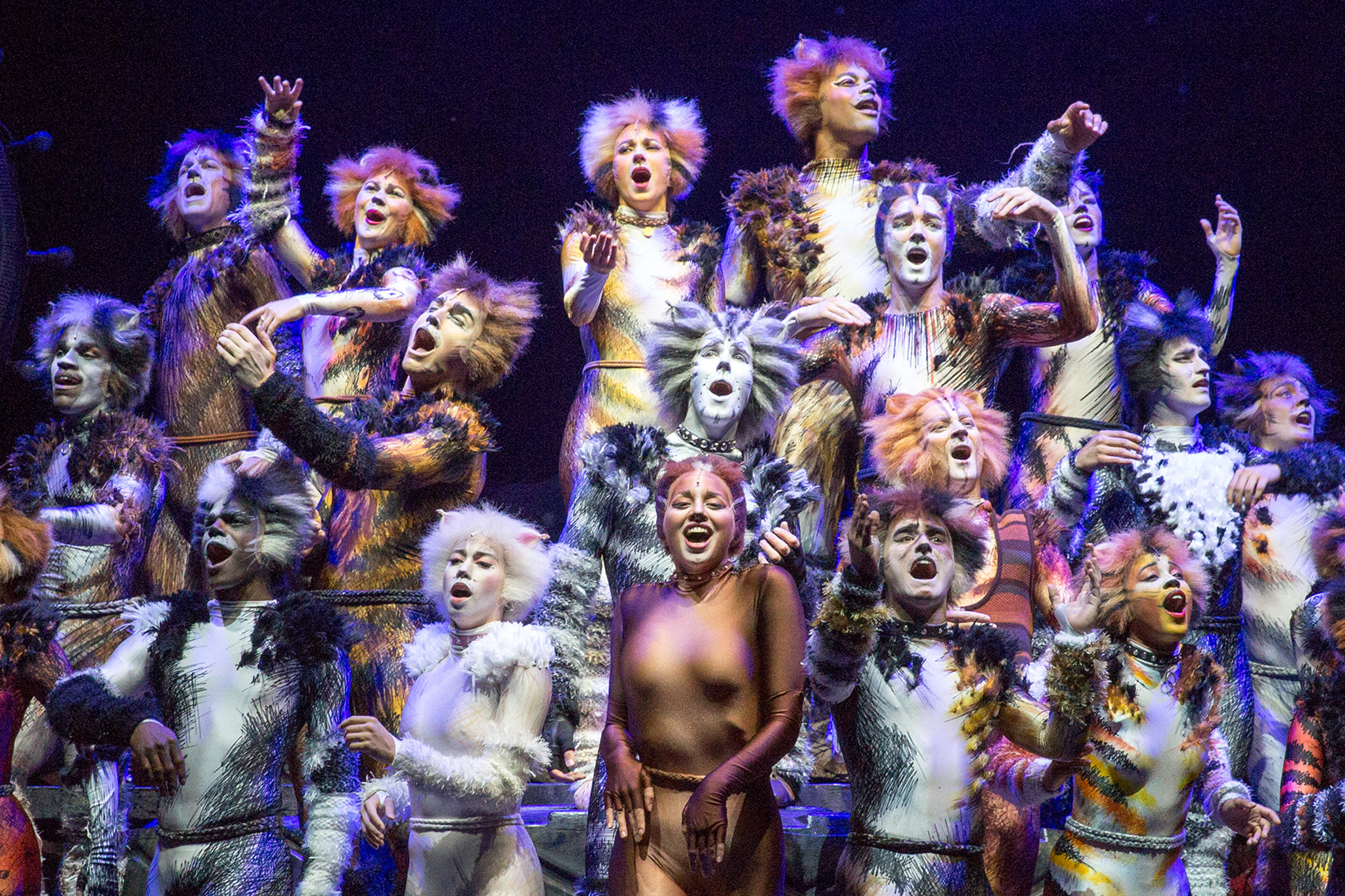 The 'Cats' ensemble rehearsing in June. Photo credit: Richard Termine for The New York Times