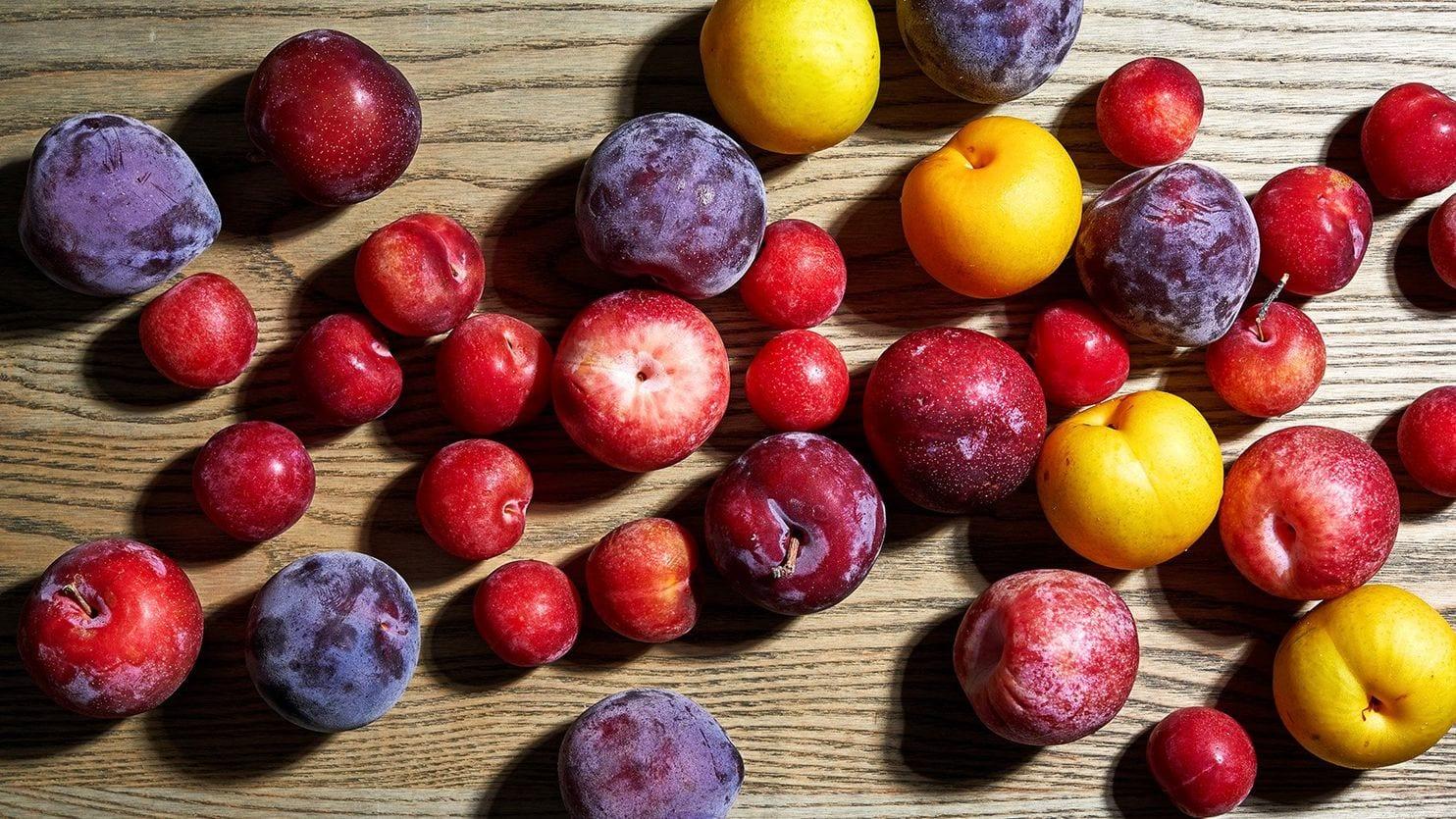 Stone Fruit.jpg