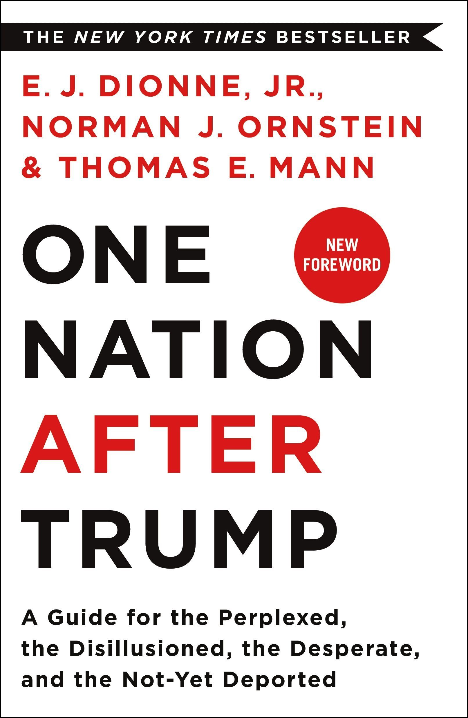 Book Cover 3 - One Nation After Trump .jpg