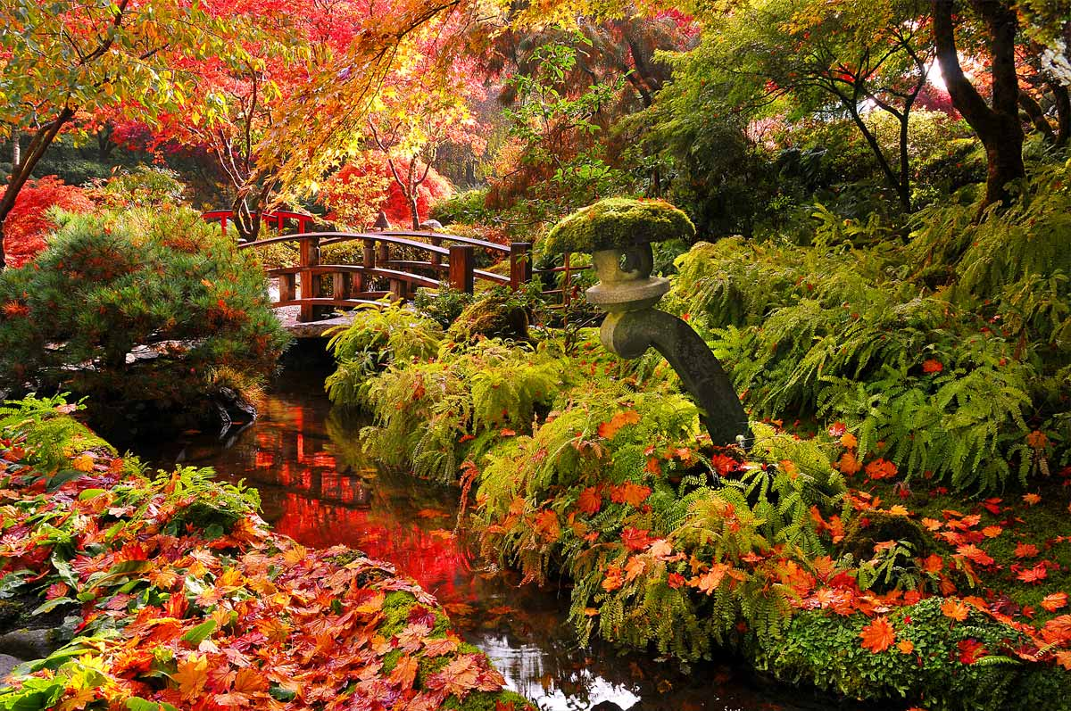 autumn-full-japanese-garden-bridge.jpg