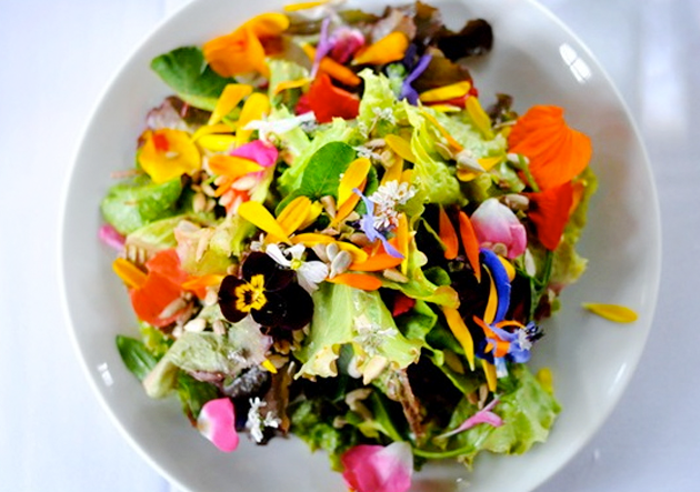 sooke harbour house salad.jpg