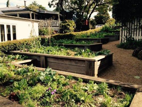 harvest+gardens.jpg