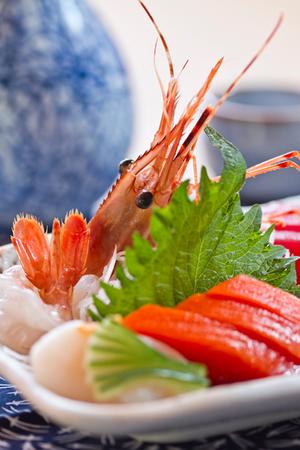 sachi+sashimi.jpg