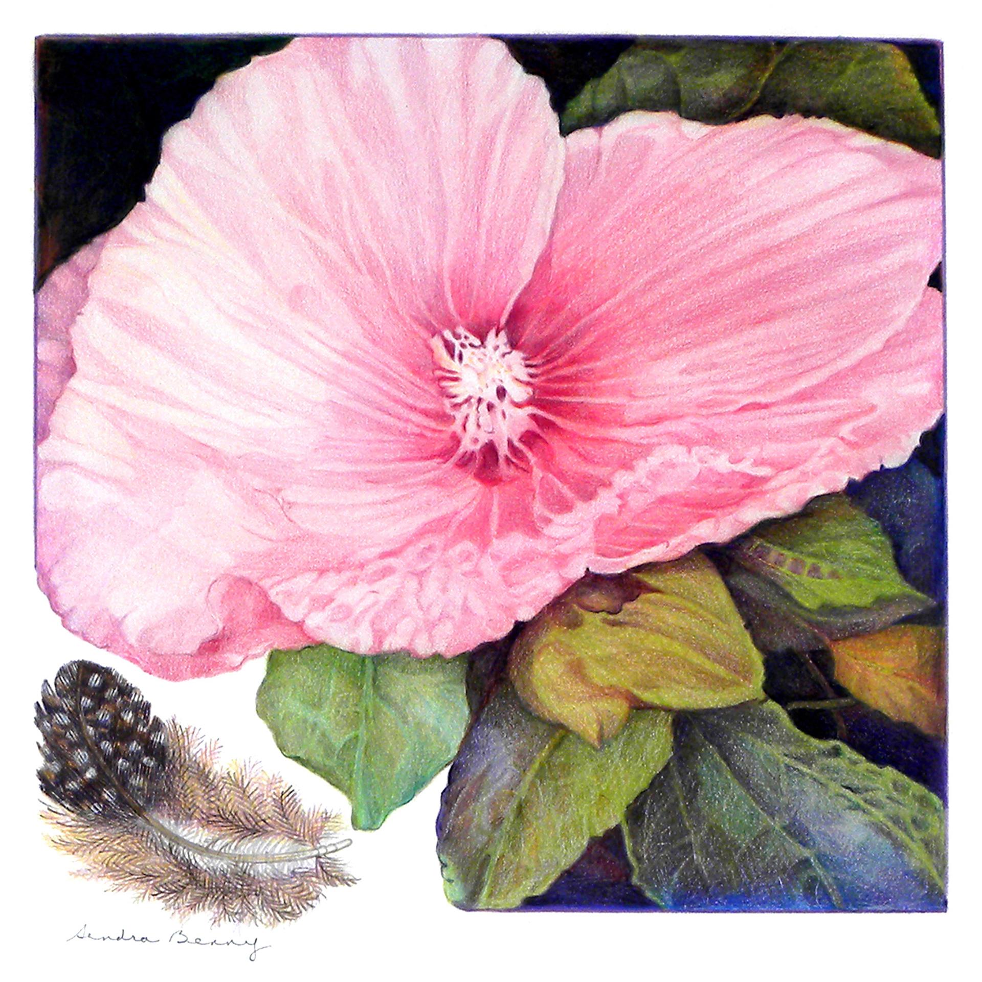 Pink Mallow  -20_x20_.jpg
