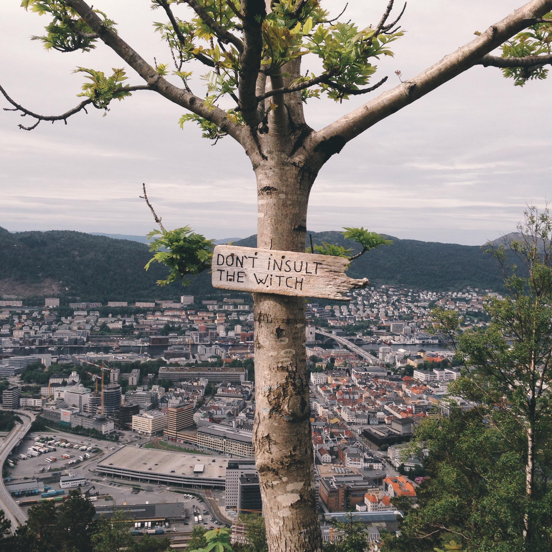Cocoon_Cooks_Bergen_Norway_22