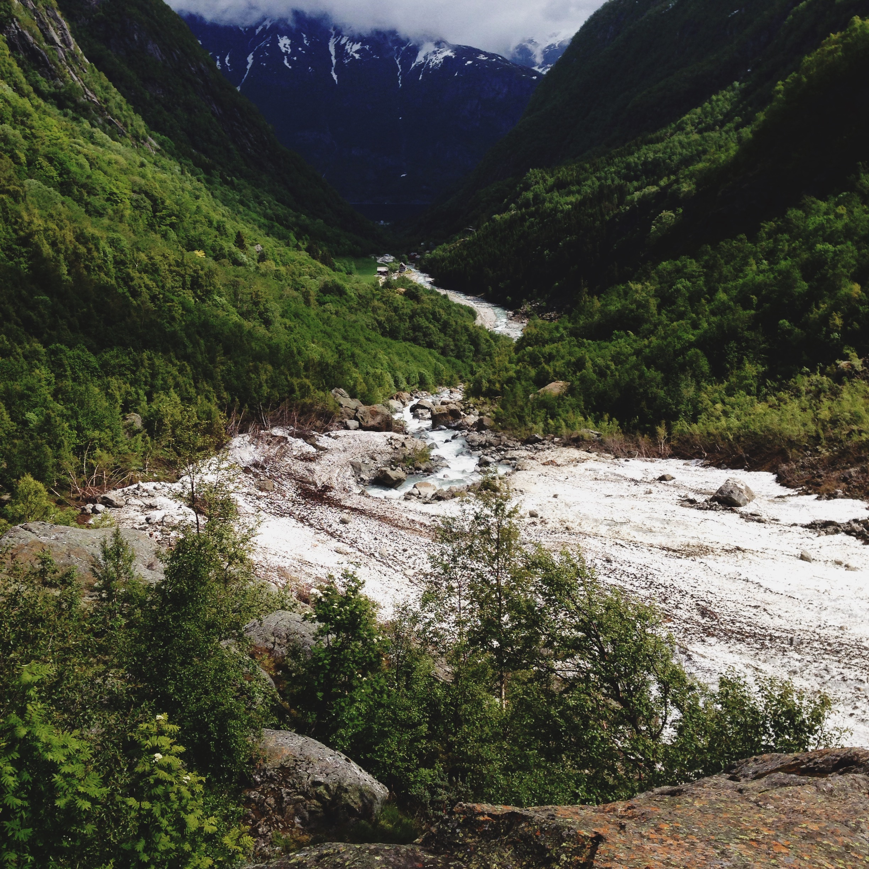 Cocoon_Cooks_Odda_Norway_21